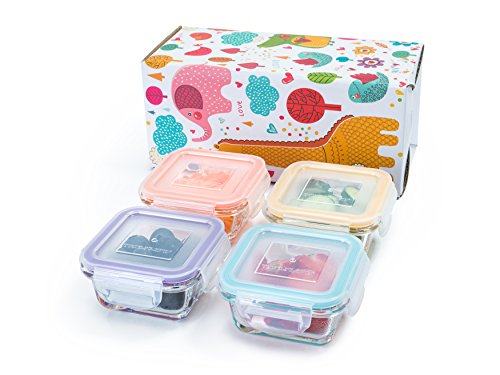 Glass Baby Food Storage Containers U2013 Mini 4 Oz Containers Gift Set (4  Containers)