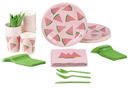 Disposable Dinnerware Set – Serves 24 – Summer Party Supplies for ...